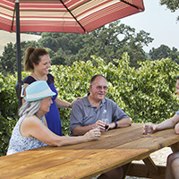 Visit Red Soles Winery